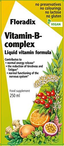Floradix Vitamin B Complex Liquid Formula, 250 ml