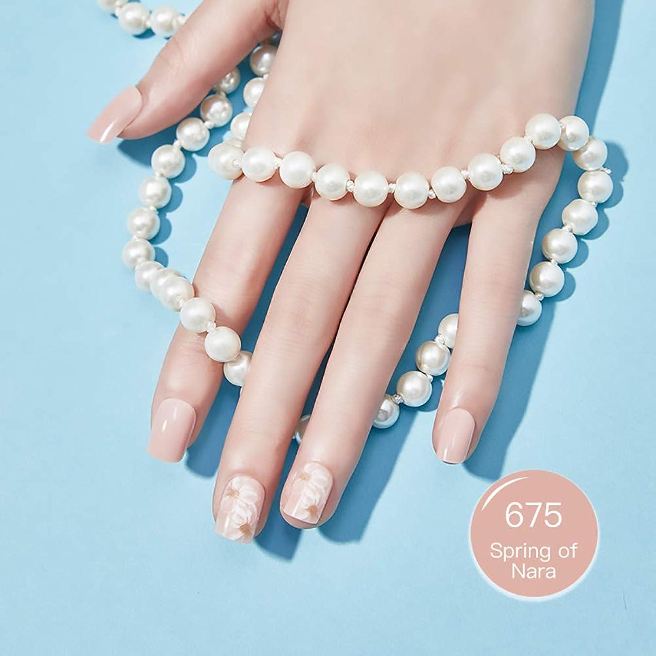 従順なアシスタント聖域OLiiii エコネイル 服装式つけ爪 繰り返し使う偽の爪 流行のデザイン 30/枚 (675)
