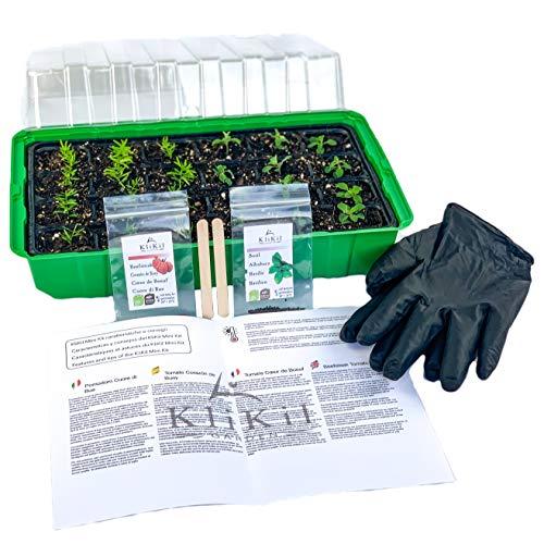 KliKil Growbox Seedling Germinator Kit mit 1 Growbox, 1 Paar Handschuhen, 2 Holzetiketten, 2 Beuteln ausgewählter Bio-Kirschtomaten und Schnittlauchsamen ohne GVO