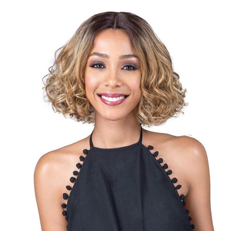 修正モニター訴える女性のための完全なかつらを見るために短いカールの髪の天然の柔らかい髪の合成レースのフロント