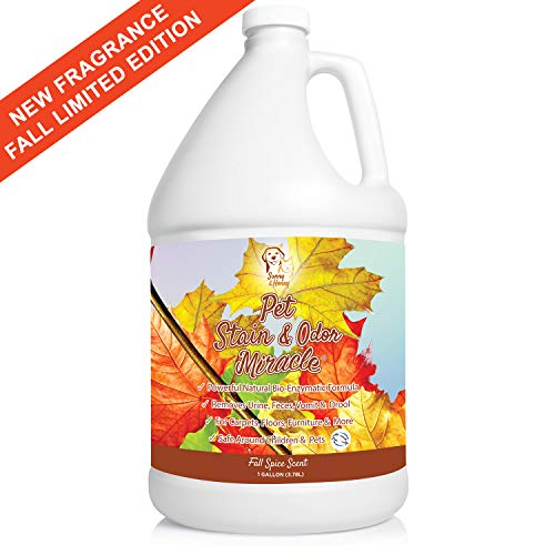 Pet Stain & Odor Miracle - Enzyme Cleaner for Dog and Cat Urine,...