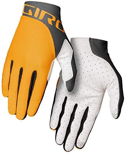 Giro Trixter - Guantes de ciclismo de montaña para hombre, color amarillo (2021)/gris Portaro, talla S