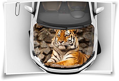 Medianlux Tiger König Wildnis Motorhaube Auto-Aufkleber Steinschlag-Schutz-Folie Airbrush Tuning Car-Wrapping Luftkanalfolie Digitaldruck Folierung