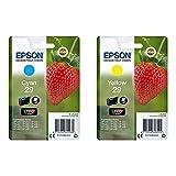 Epson C13T29824022 Cartucho De Tinta + C13T29844022 Cartucho de Tinta