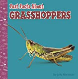 Fast Facts About Grasshoppers (Fast Facts About Bugs & Spiders) (English Edition)