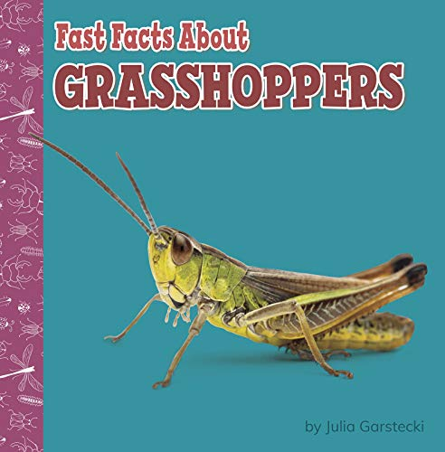 Fast Facts About Grasshoppers (Fast Facts About Bugs & Spiders)
