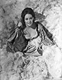 Elizabeth Taylor Smiling in Ball Dress Photo Print (20,32 x