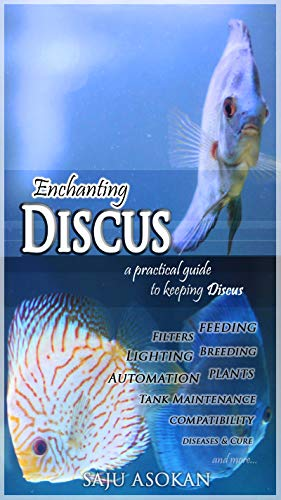 Enchanting Discus - a practical guide to keeping Discus (English Edition)