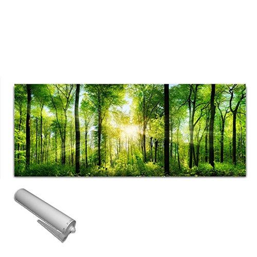 DekoGlas Küchenrückwand Glas \'Wald\' Herdblende aus Sicherheitsglas (ESG) 125x50 cm Spritzschutz Fliesenspiegel
