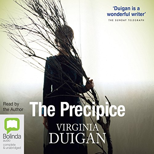 The Precipice audiobook cover art