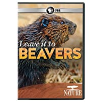 Nature: Leave It to Beavers [DVD] [Import]