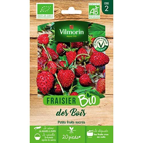 Vilmorin - Sachet graines Fraisier des Bois BIO - Fragaria vesca