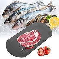家庭用食品肉解凍プレート標準仕上がり2in1解凍プレート