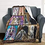 LORBUK Cute Poodle Dog Fleece Blanket Throws,Super Soft Cozy Warm Blanket for Couch Chair Bed Sofa Office,60'X80'for Adult