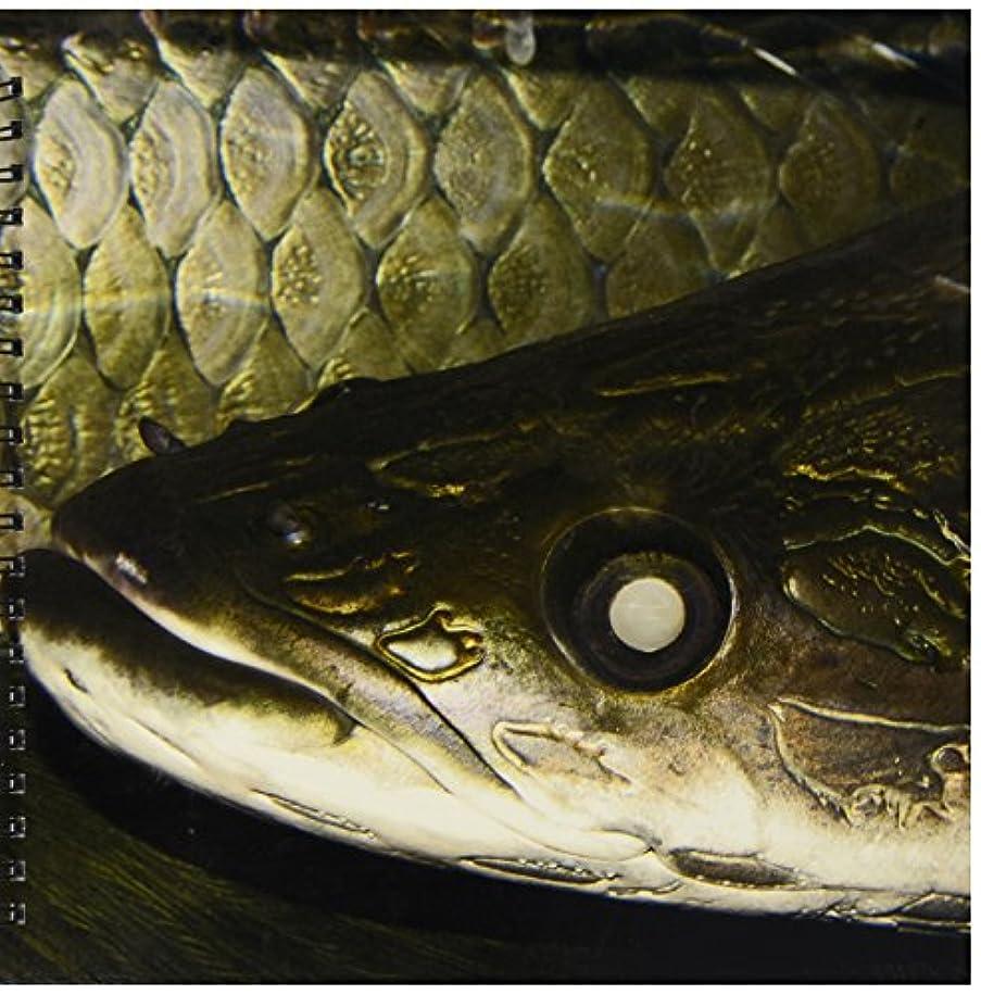 3dRose db_46357_2 Arapaima Or Pirarucu Face Detail, Arapaima Gigas Largest Freshwater Fish-Memory Book, 12 by 12-Inch