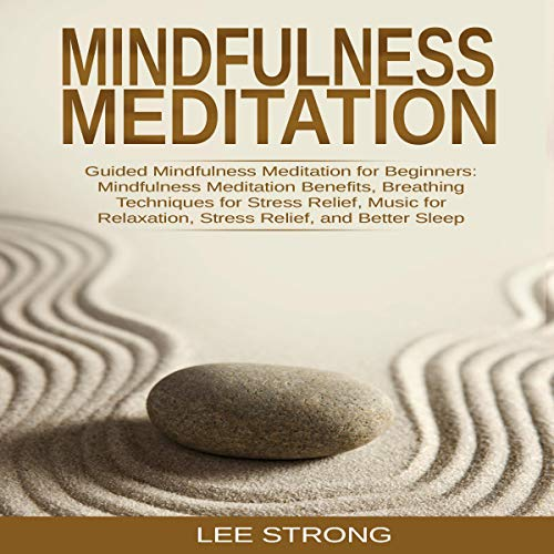 Mindfulness Meditation: Guided Mindfulness Meditation for Beginners cover art