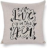 Ropa de Cama Liviana y Transpirable de algodón y cáñamo Doble Amor en el Aire Nubes de Dibujo Antiestático para inauguración Familiar Boda Día de San Valentín 18 × 18 '