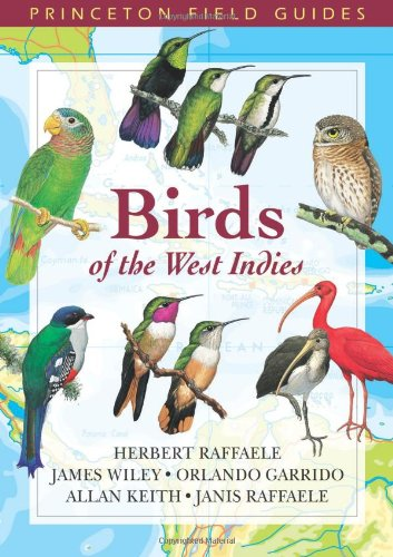 Compare Textbook Prices for Birds of the West Indies Princeton Field Guides 60 First Thus Used Edition ISBN 9780691113197 by Raffaele, Birds of the West Indies Herbert A.,Wiley, James,Garrido, Orlando H.,Keith, Allan,Raffaele, Janis I.,Pedersen, Tracy,Williams, Kristin