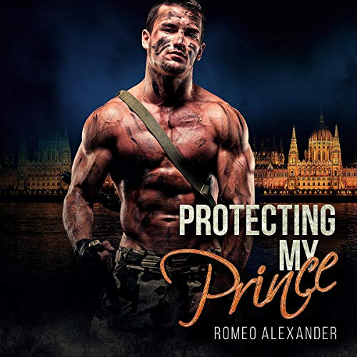 Protecting My Prince audiobook cover art