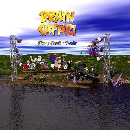 Brain Safari