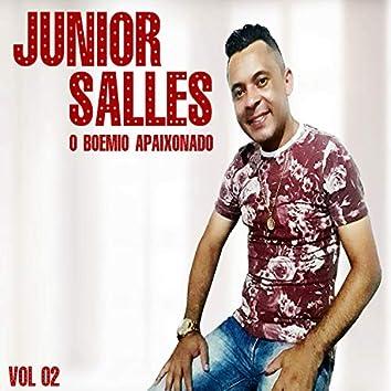 Junior Salles, o Boêmio Apaixonado, Vol. 02
