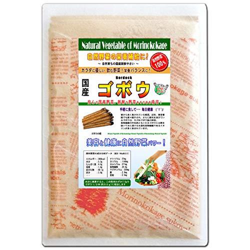 森のこかげ ゴボウ 国産 野菜 粉末 パウダー 100g 売筋粉