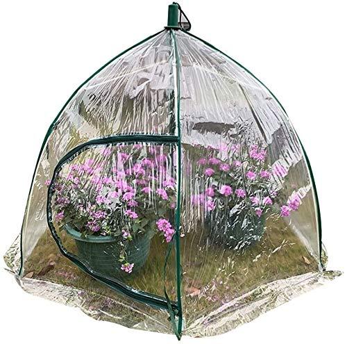 CXF Invernadero Cobertizo De Aislamiento Térmico Paraguas Jardinería Impermeable Prevención De Aves Al Aire Libre Plegable Invernaderos PVC (Size : 1pcs)