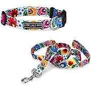 Lucky Love Dog Ladybird Collar/Leash Combo