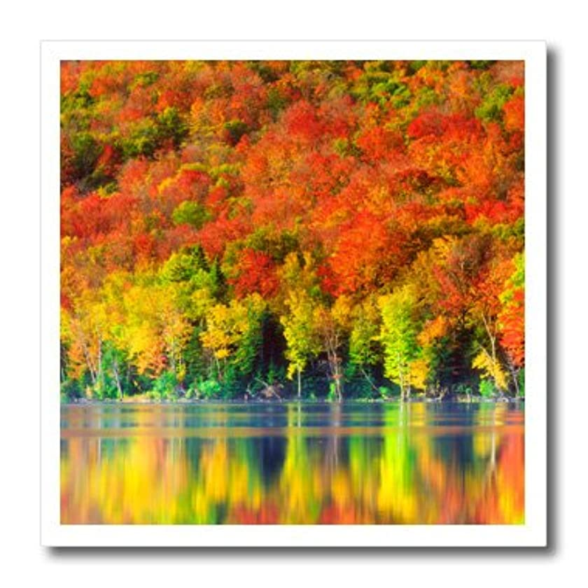 3dRose ht_206833_1 USA New York Adirondack Mountains Autumn Reflects in Heart Lake Iron on Heat Transfer for White Material, 8