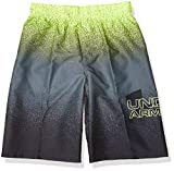 Under Armour Boys' Big Fashion Swim Trunk, Pitch Gray sp201, YSM