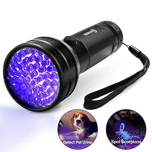 See the TOP 10 Best<br>Flashlight Pets