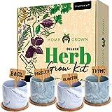 Indoor Herb Garden Starter Kit - Herb Seeds Gardening Kit Planting Pots &...