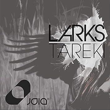 Tareki
