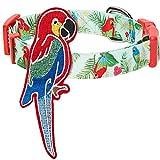 Blueberry Pet 2020 New 10 Patterns Fun Parrot Adjustable Dog Collar with Detachable Décor, Large, Neck 18'-26'