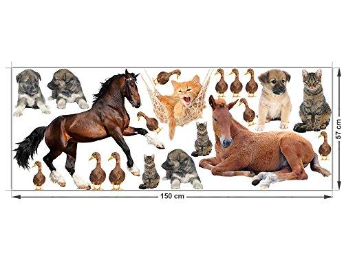GRAZDesign Wandtattoo Kinderzimmer Tiere Pferde Hunde Enten Katzen (150x57cm)