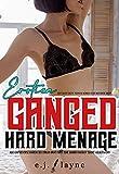 Ganged Erotica: Hard Menage Age-Gap Reverse Harem Sex: Virgin Brat First Time Bimbo Fantasy Short Adult Story (Sexy Daddy Erotic Younger Woman Older Men Biker Group Book 1) (English Edition)