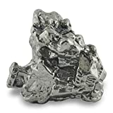 Starborn Genuine Campo Del Cielo 20-30 Gram Meteorite Nugget