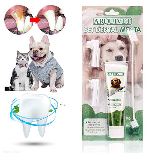 Mroobest Hund Zahnpasta, Dog Toothpaste, Hundezahnbürste, Zahnpflege-Set für Hunde, Zahnsteinentferner Ergänzung gegen Mundgeruch bei Hunden, Natürliche und Wirksame Reinigung für Zähne & Zahnfleisch