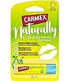 Carmex Naturally Stick Pera – el cuidado de labios natural para un resultado suave – 1 unidad de 4,25 g
