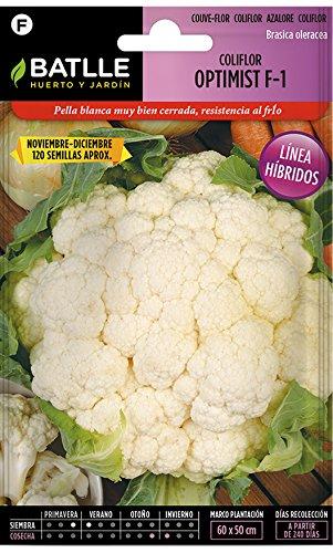 Amazon.es: Semillas Batlle: Semillas Híbridas