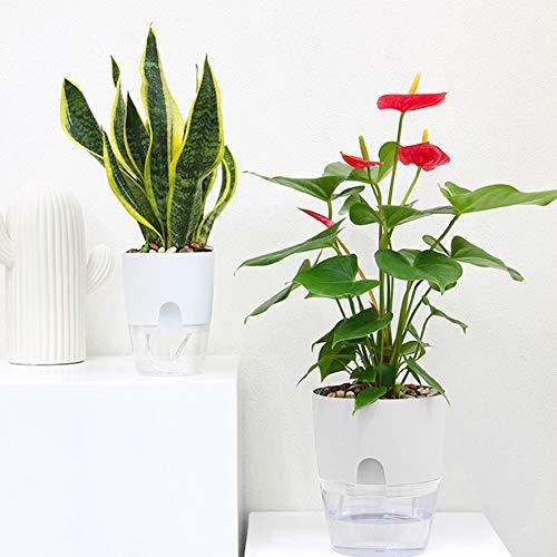 Vaso da fiori autoirrigante per interni, in plastica trasparente, a doppio strato, con serbatoio d'acqua automatico, salvavita acqua (8,5 cm)