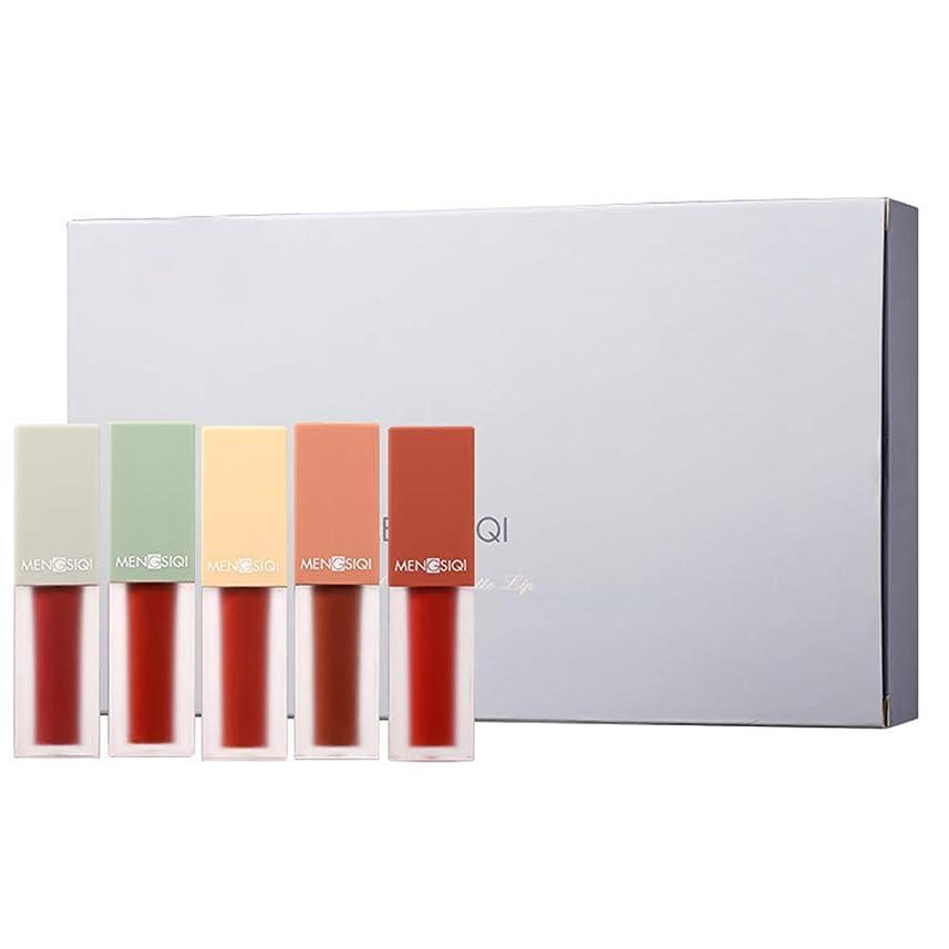 テスト膨らませるベテランMeterMall 女性マットリップグレーズ口紅リップキット長続きがする口紅化粧品セット 5pcs/set