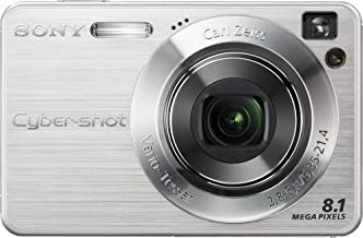 Sony Cyber-shot DSC-W130 8.1MP Digital Camera with 4x Optical Zoom with Super Steady Shot (Silver)