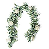 TOPHOUSE 6 Ft Artificial Rose Vine Fake Flower Garland Decorations Hanging Eucalyptus Garland with Champagne Rose for Wedding Arch Arrangement