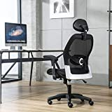 LIANFENG Ergonomic Office Chair, Mesh Computer Desk Chair with Adjustable Lumbar Support, Armrest, Headrest - High Back Executive Task Chair for Office, Home, Gaming (Black)