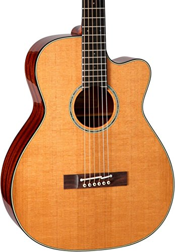 Takamine EF740FS TT Thermal Top Acoustic-Electric Guitar with Hard Case
