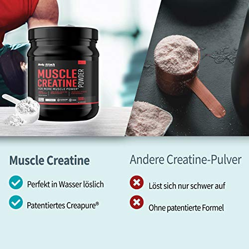 Body Attack Muscle Creatine, 1er Pack (1 x 500 g) - 5