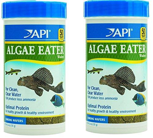 (2 Pack) API Algae Eater Alage Wafer, 6.4-Ounce Jars
