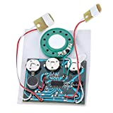 Voice Module, 30s Recordable Music Sound Voice Module Wired Double Button Control Chip 0.5W with Button Battery (1 Pack)