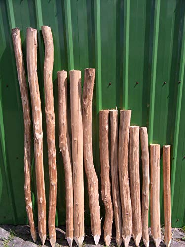 BIHL - Zaunpfosten Staketenzaun Haselnuss Pfosten Staketenpfosten Holzpfosten Stakete (180 cm)